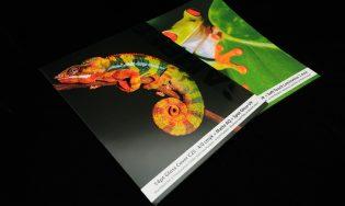 Custom Presentation Folders – Premium